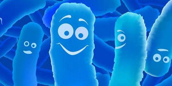 Восстановление микрофлоры кишечника при поносе