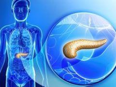 Гормоны и ферменты поджелудочной железы: их значение и опасность дефицита