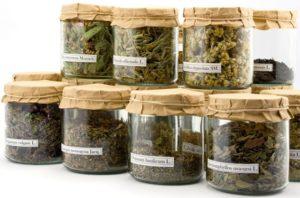 Травы при панкреатита: что можно пить
