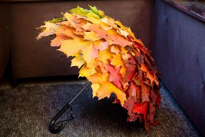 Зонт из листьев
