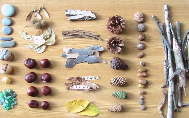Материалы для поделок из шишек и желудей