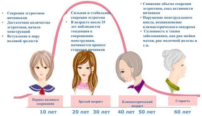 Изменение гормонального фона женщины при климаксе и в течение жизни