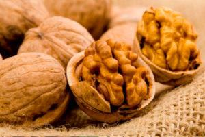 Грецкие орехи при гастрите
